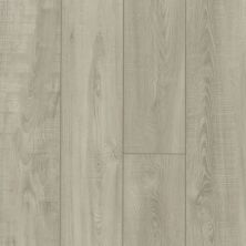Shaw Floors Resilient Residential Pantheon HD Plus Trevi 01026_2001V