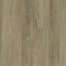 Shaw Floors Resilient Residential Pantheon HD Plus Capri 07048_2001V