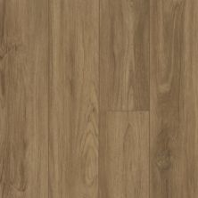 Shaw Floors Vinyl Residential Pantheon HD Plus Santa Maria 07049_2001V