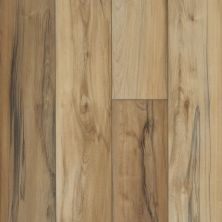 Shaw Floors Resilient Residential Titan HD Plus Imperial Beech 00185_2002V