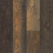 Shaw Floors Vinyl Residential Titan HD Plus Autumn Barnboard 00689_2002V