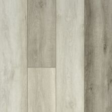 Shaw Floors Resilient Residential Titan HD Plus Modern Oak 05037_2002V