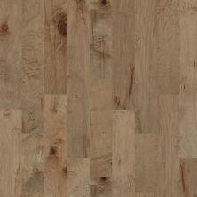 Shaw Floors SFA Mendocino Gold Dust 01001_200SA