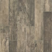 Shaw Floors Ceramic Solutions Timeworn 8 X 40 Timber 00750_201TS