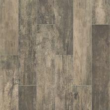 Shaw Floors Ceramic Solutions Timeworn 8×40 Timber 00750_201TS