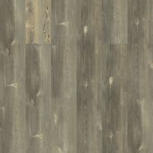 Shaw Floors Vinyl Residential Intrepid HD Plus Pitch Pine 00167_2024V