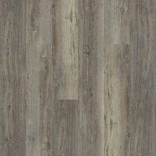 Shaw Floors Resilient Residential Intrepid HD Plus Silver Oak 05003_2024V