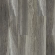 Shaw Floors Vinyl Residential Intrepid HD Plus Charred Oak 05009_2024V