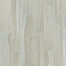 Shaw Floors Ceramic Solutions Studio 8×40 London 00200_202TS