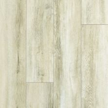Shaw Floors Resilient Residential Paragon XL HD Plus Driftwood Oak 01029_2033V