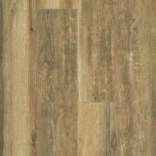 Shaw Floors Resilient Residential Paragon XL HD Plus Brown Sugar Oak 07054_2033V