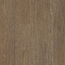 Shaw Floors Resilient Residential Prodigy Hdr Plus Glogg 07203_2038V