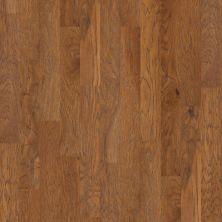 Shaw Floors Reality Homes Hurricane Ridge Woodlake 00879_203RH