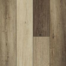 Shaw Floors Resilient Residential Goliath Plus Warm Brown 00249_2042V