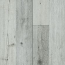 Shaw Floors Resilient Residential Goliath Plus Coastal Oak 01007_2042V