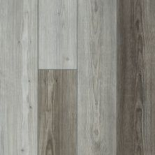 Shaw Floors Resilient Residential Goliath Plus Greyed Pine 05040_2042V