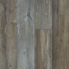 Shaw Floors Resilient Residential Goliath Plus Greyed Split Oak 05061_2042V