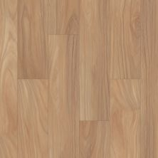 Shaw Floors Resilient Residential Distinction Plus Natural Acacia 01093_2045V