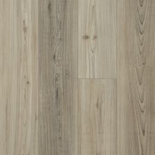 Shaw Floors Resilient Residential Distinction Plus Light Pine 07064_2045V