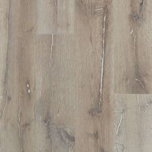 Shaw Floors Reality Homes Imagination Oak Tinderbox 05082_209RH