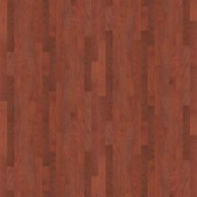 Shaw Floors SFA Parker 5″ Cherry 00947_209SA