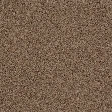 Anderson Tuftex SFA Kinross II Brown Sugar 0774B_20SSF