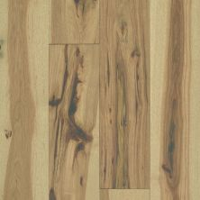 Shaw Floors Reality Homes Imagination Hky Luminous 01033_210RH
