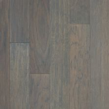 Shaw Floors SFA Foothills Sterling 05029_224SA