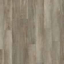 Shaw Floors Resilient Residential Classico Plus Plank Molo 00125_2426V