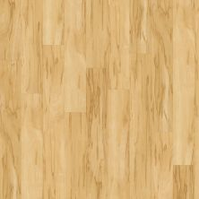 Shaw Floors Resilient Residential Classico Plus Plank Luce 00128_2426V