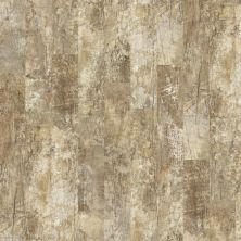 Shaw Floors Vinyl Residential Premio Plus Plank Lucca 00248_2490V