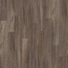 Shaw Floors Vinyl Residential Premio Plus Plank Duca 00527_2490V