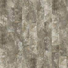 Shaw Floors Resilient Residential Premio Plus Plank Siena 00549_2490V
