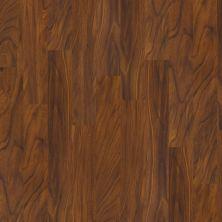 Shaw Floors Vinyl Residential Premio Plus Plank Salerno 00617_2490V