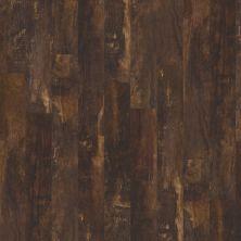 Shaw Floors Vinyl Residential Premio Plus Plank Monte 00754_2490V