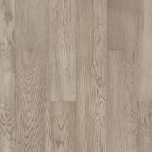 Shaw Floors Floorte Exquisite Silverado Oak 05065_250RH