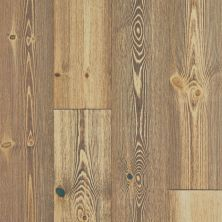 Shaw Floors Floorte Exquisite Spiced Pine 06004_250RH