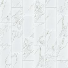 Shaw Floors Ceramic Solutions Universe 12×24 White 00120_251TS