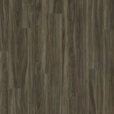 Shaw Floors Vinyl Residential Valore Plus Plank Costa 00150_2545V