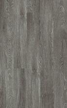 Shaw Floors Resilient Residential Valore Plus Plank Pola 00590_2545V