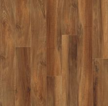 Shaw Floors Resilient Residential Valore Plus Plank Venna 00820_2545V