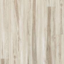 Shaw Floors Resilient Residential Alto Plus Plank Mandorla 00118_2576V