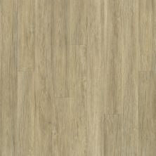 Shaw Floors Resilient Residential Alto Plus Plank Carbonaro 00124_2576V