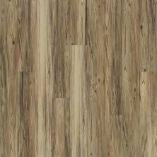 Shaw Floors Resilient Residential Alto Plus Plank Taburno 00151_2576V