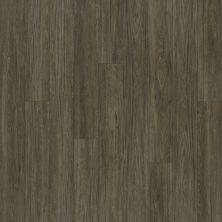 Shaw Floors Vinyl Residential Alto Plus Plank Presanella 00503_2576V
