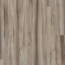 Shaw Floors Resilient Residential Alto Plus Plank Noce 00526_2576V