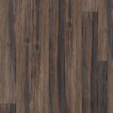 Shaw Floors Vinyl Residential Alto Plus Plank Nocciola 00702_2576V