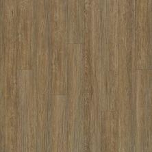 Shaw Floors Vinyl Residential Alto Plus Plank Marmolada 00782_2576V