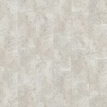 Shaw Floors Ceramic Solutions Jackson 12×24 Gris 00500_257TS