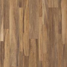 Shaw Floors Resilient Residential Alto Mix Plus Gran Sasso Jatoba 00608_2662V